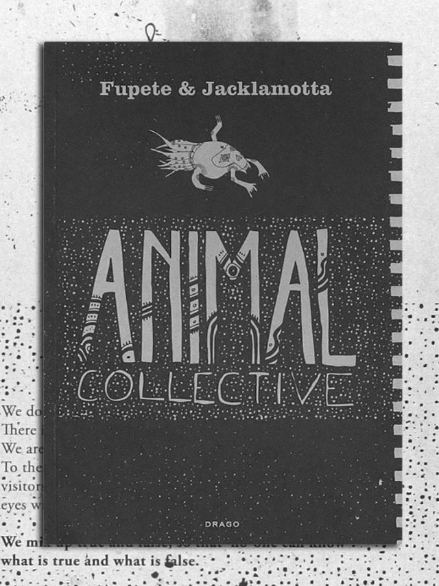 animal_collective_fronte